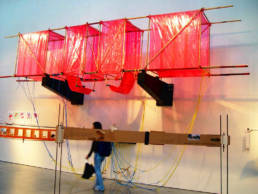The Diplothopter Art installation