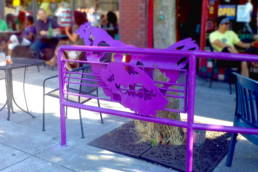 Alberta Alignment: Urban Farming Violet Chicken